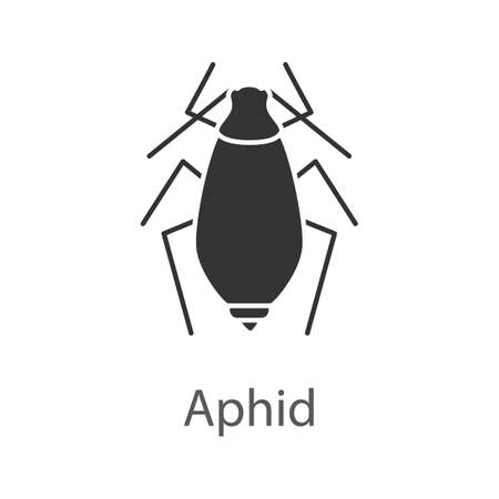 Aphid glyph icon Vector isolated illustration