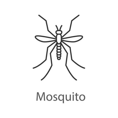 Mosquito linear icon Vector isolated outline drawing