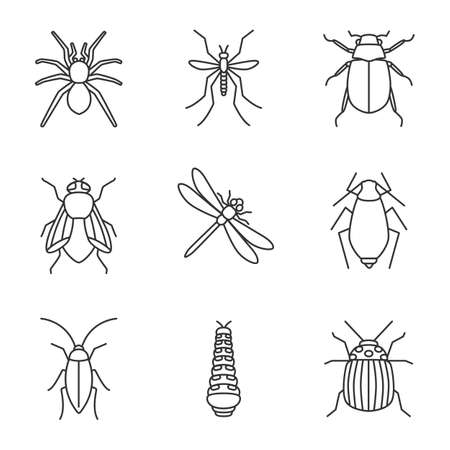 linear icons set. Spider, mosquito, maybug, cockroach, housefly, dragonfly, aphid, caterpillar, colorado bug. Thin line contour symbols. Isolated vector outline illustrations