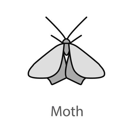 Moth color icon. Butterfly. Insect. Isolated vector illustration 向量圖像