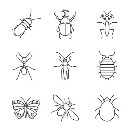linear icons set. Darkling beetle, hercules bug, mantis, ant, grasshopper, woodlouse, butterfly, honey bee, mite. Thin line contour symbols. Isolated vector outline illustrations
