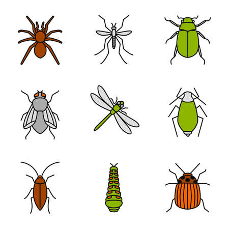 Insects color icons set. Spider, mosquito, maybug, cockroach, housefly, dragonfly, aphid, caterpillar, colorado bug. Isolated vector illustrations Illustration