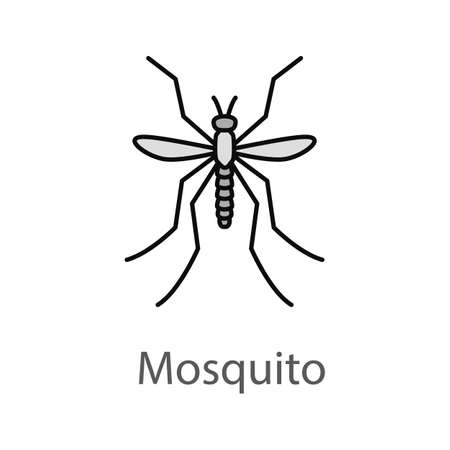 Mosquito color icon. Insect. Midge, gnat. Isolated vector illustration Illustration