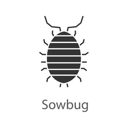 Woodlouse glyph icon. Silhouette symbol. Roll up bug. Sowbug. Negative space. Vector isolated illustration