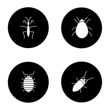 Insects glyph icons set vector illustration