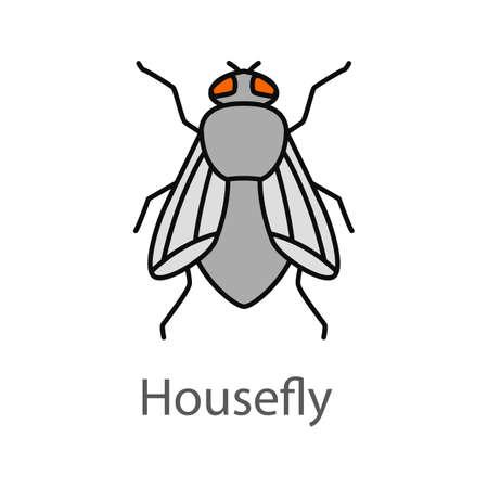 Ikona kolor mucha. Musca domowa. Mucha owad. Ilustracja wektorowa na białym tle