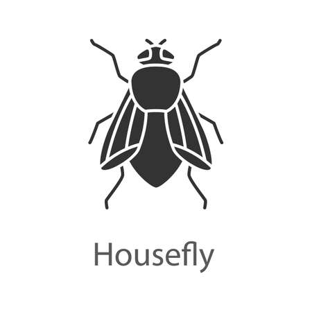 Housefly glyph icon. Insect. Musca domestica. Fly insect. Silhouette symbol. Negative space. Vector isolated illustration