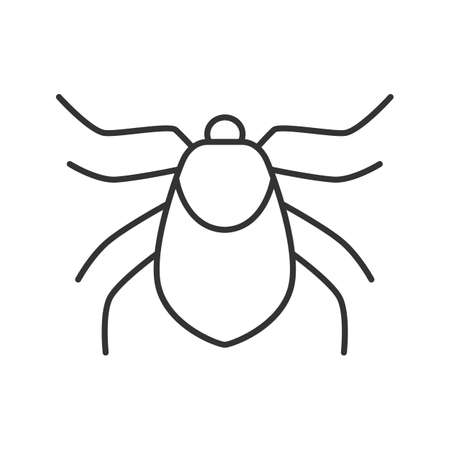 Mite linear icon. Acari. Thin line illustration. Insect pest. Contour symbol. Vector isolated outline drawing Illustration