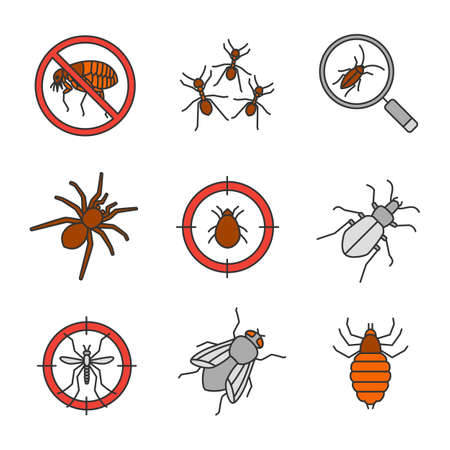 Pest control color icons set. Stop fleas, ants, cockroach searching, spider, mite target, mosquito bait, ground beetle, housefly, bed bug. Isolated vector illustrations