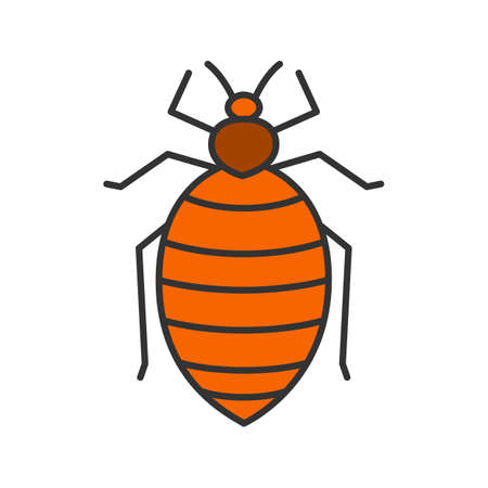 Bed bug color icon. Human parasite. Insect pest. Isolated vector illustration