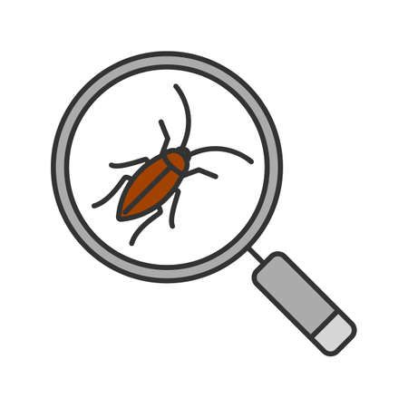 Cockroach searching color icon. Pest control service. Magnifying glass with roach. Isolated vector illustration