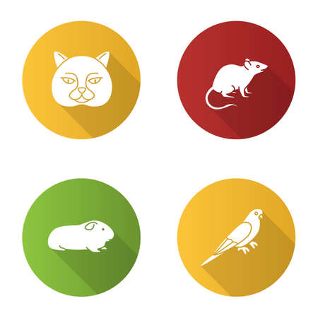 Pets flat design long shadow glyph icons set. British cat, mouse, cavy, budgerigar. Vector silhouette illustration Stock Vector - 101613861