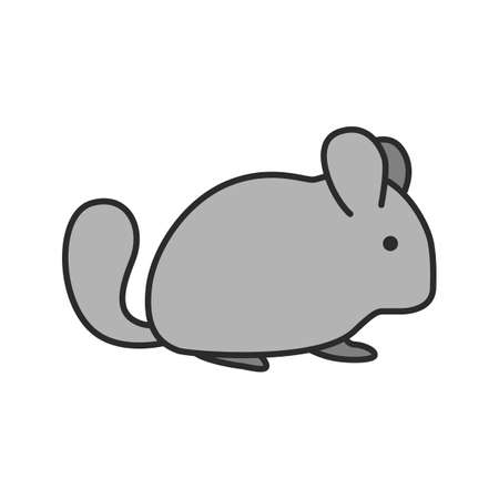 Chinchilla color icon. Isolated vector illustration Illustration