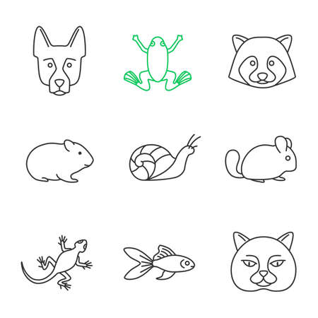 Pets linear icons set. German Shepherd, frog, raccoon, hamster, snail, chinchilla, frog, lizard, goldfish, British cat. Thin line contour symbols. Isolated vector outline illustrations Vettoriali