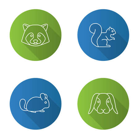 Pets flat linear long shadow icons set. Raccoon, squirrel, chinchilla, rabbit. Vector outline illustration