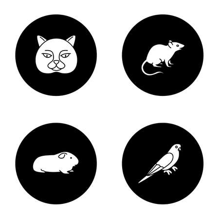 Pets glyph icons set. British cat, mouse, cavy, budgerigar. Vector white silhouettes illustrations in black circles Stock Illustratie
