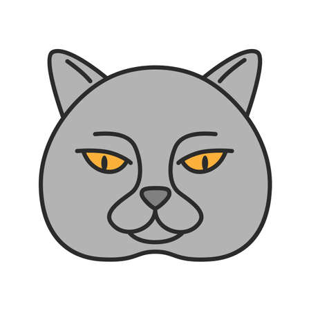British shorthair cat color icon. British blue. Isolated vector illustration