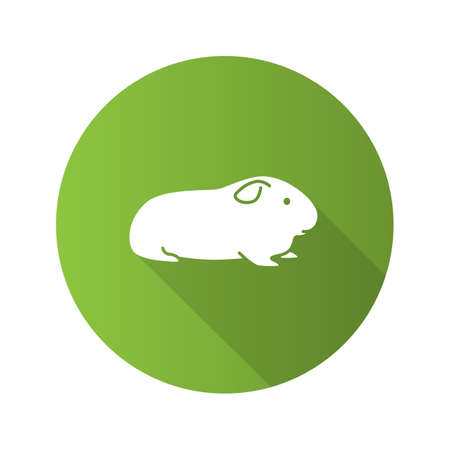 Cavy flat design long shadow glyph icon. Domestic guinea pig. Vector silhouette illustration Illustration
