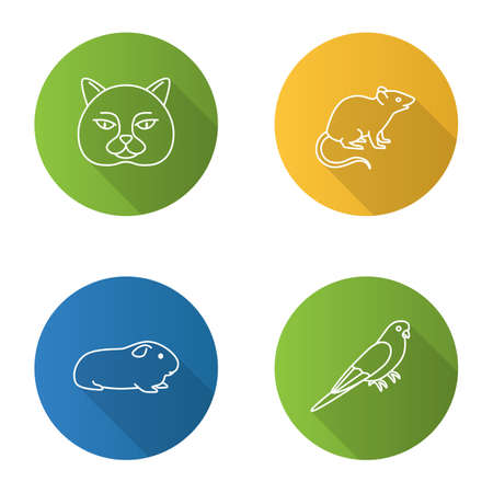 Pets flat linear long shadow icons set. British cat, mouse, cavy, budgerigar. Vector outline illustration