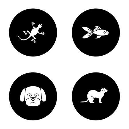 Pets glyph icons set. Lizard, goldfish, maltese dog, ferret. Vector white silhouettes illustrations in black circles