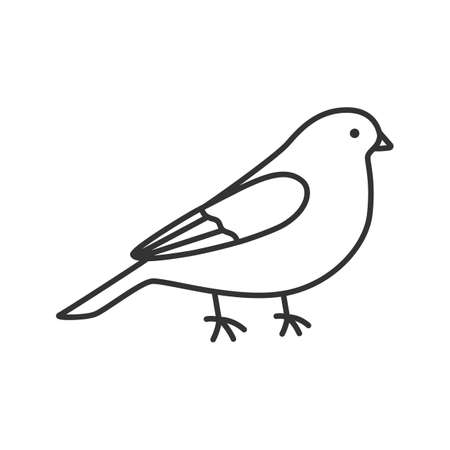 Canary linear icon. Thin line illustration. Songbird. Contour symbol. Vector isolated outline drawing 向量圖像
