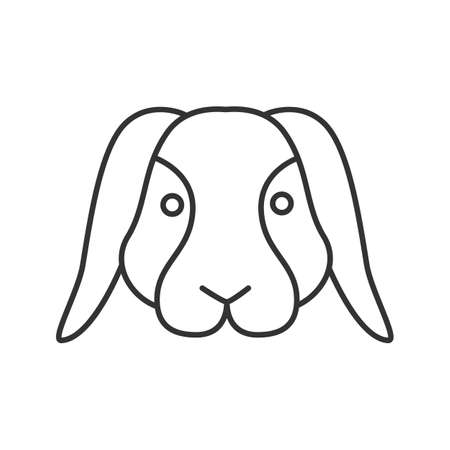Dwarf rabbit linear icon. Thin line illustration. Bunny. Hare. Contour symbol. Vector isolated outline drawing