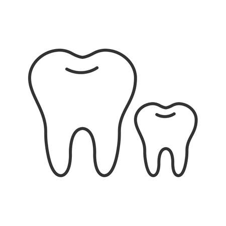 Baby and permanent teeth linear icon. Milk tooth. Thin line illustration. Children dentistry. Contour symbol. Vector isolated drawing