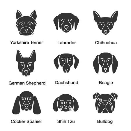Dogs breeds glyph icons set. Yorkshire Terrier, Labrador, German Shepherd, Chihuahua, dachshund, beagle, Cocker Spaniel, Shih Tzu, English Bulldog. Silhouette symbols. Vector isolated illustratio