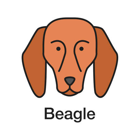Icono de color Beagle. Raza de perro sabueso. Ilustración de vector aislado