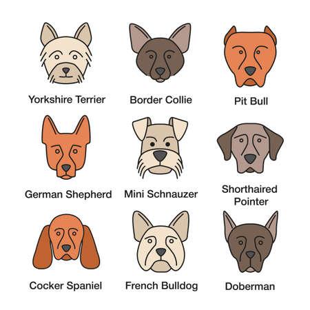Dogs breeds color icons set. Yorkshire Terrier, German Shepherd, Cocker Spaniel, Border Collie, French Bulldog, pit bull, Doberman Pinscher, Shorthaired Pointer. Isolated vector illustrations