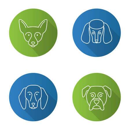 Dogs breeds flat linear long shadow icons set. Chihuahua, poodle, beagle, boxer. Vector outline illustration
