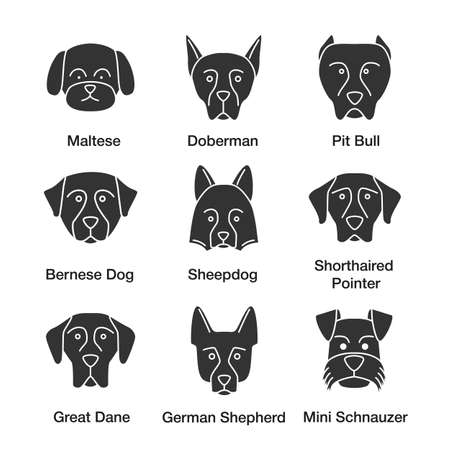 Dogs breeds glyph icons set. Maltese, Doberman, pit bull, Bernese Dog, Sheepdog, Shorthaired Pointer, Great Dane, German Shepherd, Mini Schnauzer. Silhouette symbols. Vector isolated illustratio