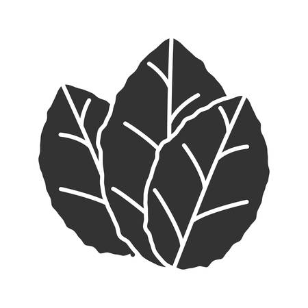 Tobacco leaves glyph icon. Mint. Silhouette symbol. Negative space. Vector isolated illustration Illustration