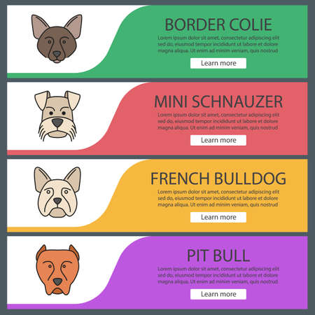 Dogs breeds web banner templates set. Website color menu items.  Border Collie, Mini Schnauzer, French bulldog, pit bull. Vector headers design concepts  イラスト・ベクター素材