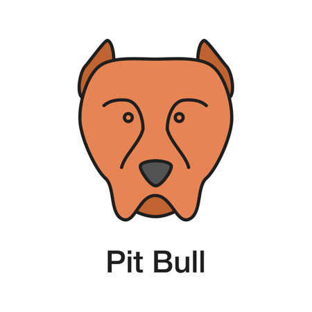 Pit bull color icon. Staffordshire Terrier. Fighting dog breed. Isolated vector illustration