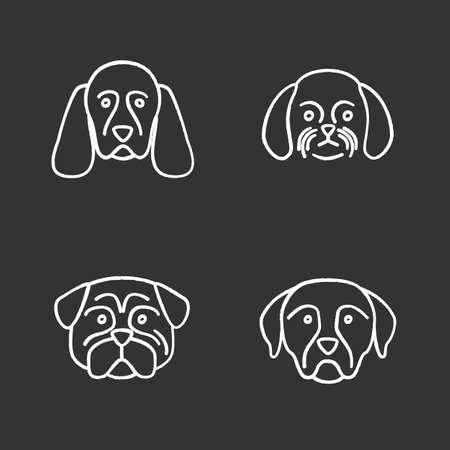 Dogs breeds chalk icons set. Cocker Spaniel, Shih Tzu, pug, Rottweiler. Isolated vector chalkboard illustrations