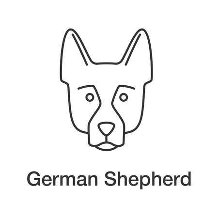 German Shepherd linear icon. Alsatian. Thin line illustration. Guide dog breed. Contour symbol. Vector isolated outline drawing