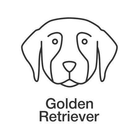 Golden Retriever linear icon. Thin line illustration. Guide dog breed. Contour symbol. Vector isolated outline drawing Illustration