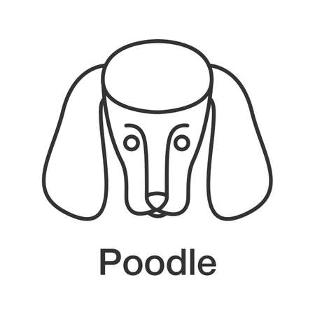 Poodle linear icon. Thin line illustration. Dog breed. Contour symbol. Vector isolated outline drawing Stock Illustratie