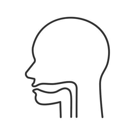 Oral cavity, pharynx and esophagus linear icon. Thin line illustration. Upper section of alimentary canal. Contour symbol. Vector isolated outline drawing Vector Illustration