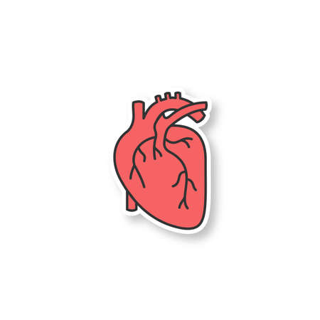 Human heart anatomy patch. Color sticker. Vector isolated illustration Çizim