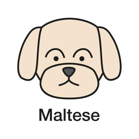 Maltese color icon. Toy dog breed. Isolated vector illustration Ilustração Vetorial