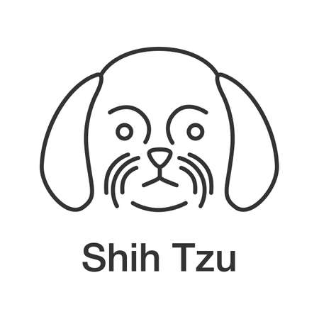 Shih Tzu linear icon. Thin line illustration. Chrysanthemum dog breed. Contour symbol. Vector isolated outline drawing Vector Illustration