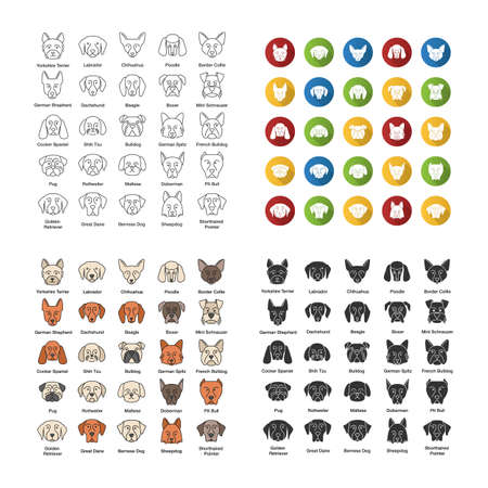 Dogs breeds icons set. Canine. Guide, guardian, hunting, herding dogs. Linear, flat design, color and glyph styles. Isolated vector illustrations Illustration