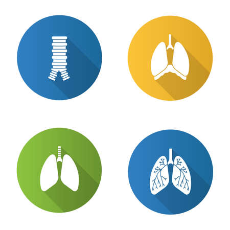 Internal organs flat design long shadow glyph icons set. Respiratory system. Trachea, lungs, bronchi, bronchioles, thoracic cavity, diaphragm. Vector silhouette illustration Illustration