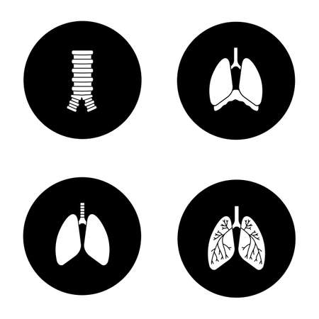 Internal organs glyph icons set. Respiratory system. Trachea, lungs, bronchi, bronchioles, thoracic cavity, diaphragm. Vector white silhouettes illustrations in black circles