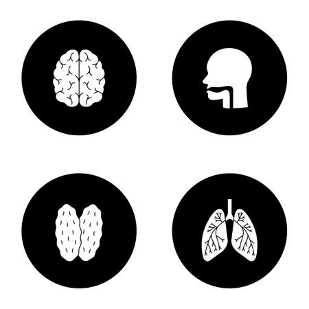 Internal organs glyph icons set. Brain, oral cavity, thymus, lungs with bronchi and bronchioles. Vector white silhouettes illustrations in black circles Ilustração