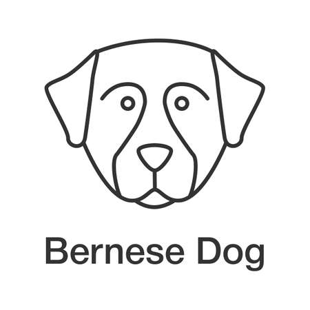 Bernese Mountain dog linear icon. Thin line illustration. Sennenhund dog. Contour symbol. Vector isolated outline drawing