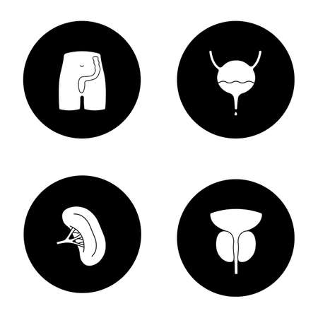 Internal organs glyph icons set. Rectum and anus, urinary bladder, spleen, prostate gland. Vector white silhouettes illustrations in black circles