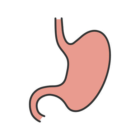 Stomach color icon. Gastrointestinal, tract.